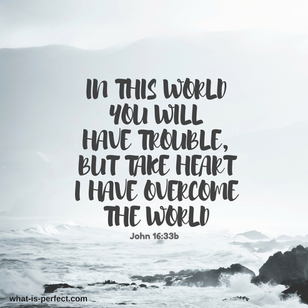 In this world you will have trouble, but take heartI have overcome the world.jpg