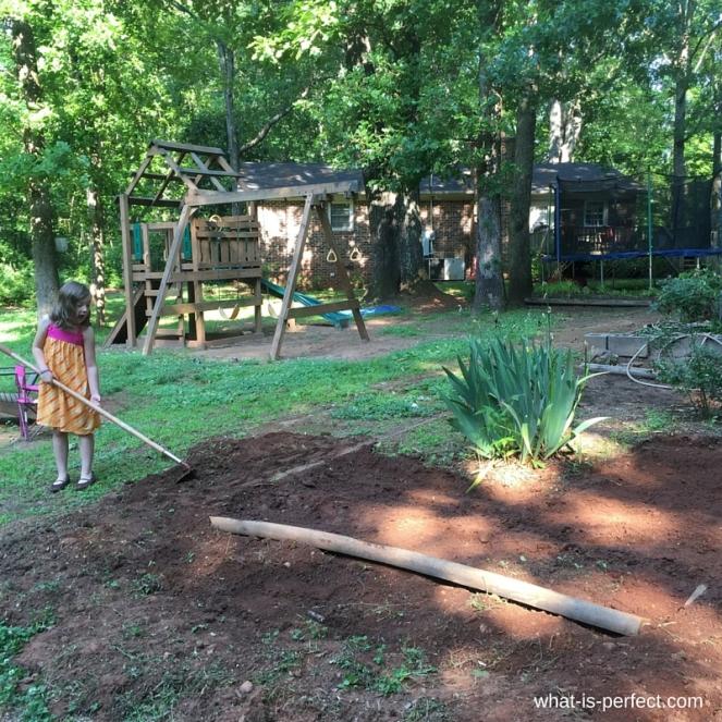 Karis gardening